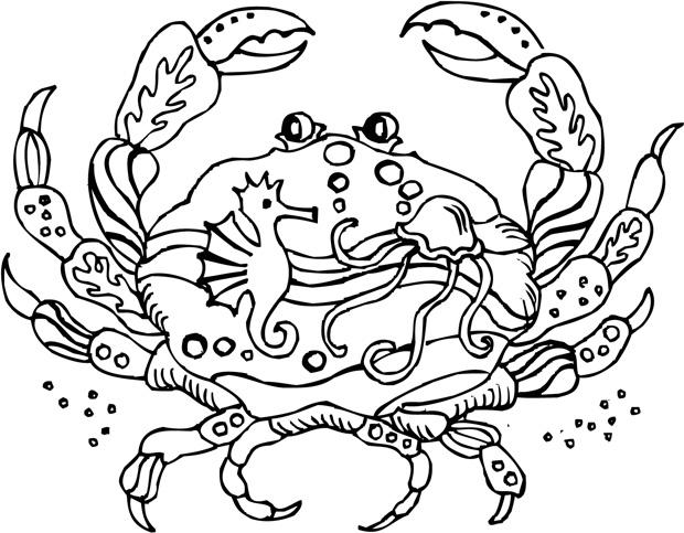 Sarasota Stamps Mounted Rubber Stamp: Deco Crab