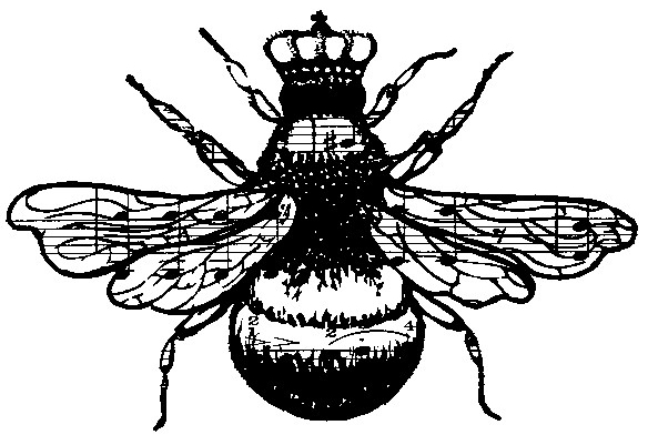 The gallery for --> Queen Bee Drawing