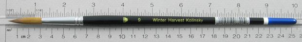 Winter Harvest Kolinsky Sable Long Hair Round # 9 Brush: Full Length Shot with Rulers
