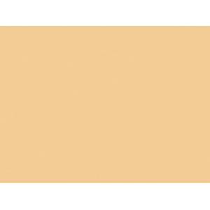 Winsor & Newton™ Artists' Acrylic Color 60ml Buff Titanium; Color: Metallic; Format: Tube; Size: 60 ml; Type: Acrylic; (model 2320060), price per tube