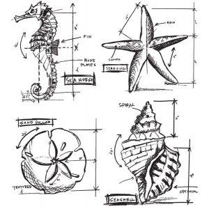 Stampers Anonymous Tim Holtz Stamps Nautical Blueprint Stamp Set