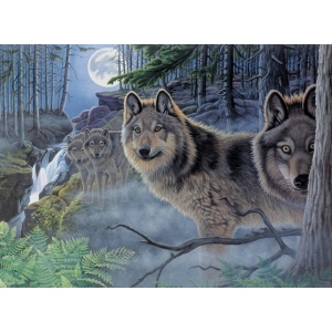 "Royal & Langnickel® Painting by Numbers™ 12 3/4 x 15 3/4 Adult Set Mystical Moonlight; Board Size: 12 3/4"" x 15 3/4""; (model PAL39), price per set"