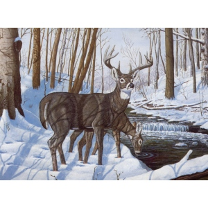"Royal & Langnickel® Painting by Numbers™ 12 3/4 x 15 3/4 Adult Set Winter Bliss; Board Size: 12 3/4"" x 15 3/4""; (model PAL43), price per set"