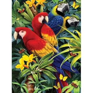 """Royal & Langnickel® Painting by Numbers™ 8 3/4 x 11 3/8 Junior Small Set Majestic Macaws; Board Size: 8 3/4"""" x 11 3/8""""; (model PJS83), price per set"""