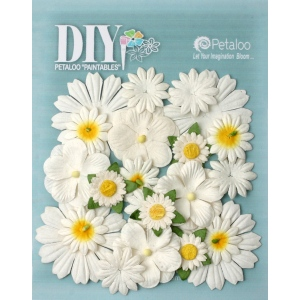Petaloo - DIY Paintables - Mixed Flowers x 22