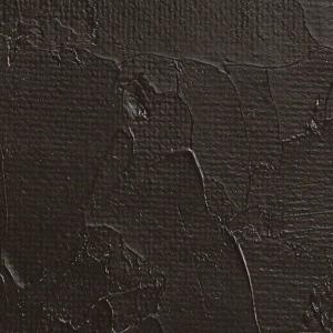 Gamblin 1980 Oil Color Paint Raw Umber 150ml; Color: Brown; Format: Tube; Size: 150 ml; Type: Oil; (model G6620), price per tube