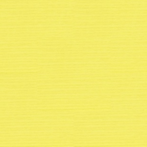 "Strathmore® 19"" x 25.5"" Textured Sheets Bright Yellow; Color: Yellow; Format: Sheet; Quantity: 10 Sheets; Size: 19"" x 25 1/2""; Texture: Felt; Type: Textured; Weight: 80 lb; (model ST107-130), price per sheet"