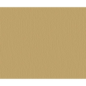 "Strathmore® 500 Series 25"" x 19"" Golden Brown Charcoal Sheets; Color: Brown; Finish: Laid; Format: Sheet; Quantity: 25 Sheets; Size: 19"" x 25""; Type: Charcoal; Weight: 64 lb; (model ST60-126), price per sheet"