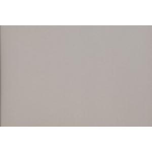 """Canson® Mi-Teintes® M/T PSTL SHT 22x30 122 FLN GRY: Black/Gray, Sheet, 22"""" x 30"""", Pastel, (model C200005953), price per sheet"""