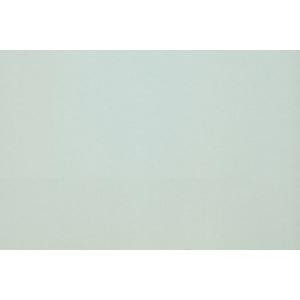 "Canson® Mi-Teintes® M/T PSTL SHT 22x30 354 SKY GRY: Blue, Sheet, 22"" x 30"", Pastel, (model C200005956), price per sheet"