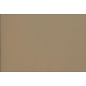"Canson® Mi-Teintes® M/T PSTL SHT 22x30 336 SAND; Color: Brown; Format: Sheet; Size: 22"" x 30""; Type: Pastel; (model C200005961), price per sheet"