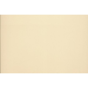 "Canson® Mi-Teintes® M/T PSTL SHT 22x30 407 CREAM; Color: White/Ivory; Format: Sheet; Size: 22"" x 30""; Type: Pastel; (model C200005962), price per sheet"