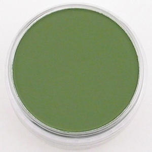 PanPastel® ; Color: Green; Format: Pan; Type: Ultra Soft; (model PP26603), price per each