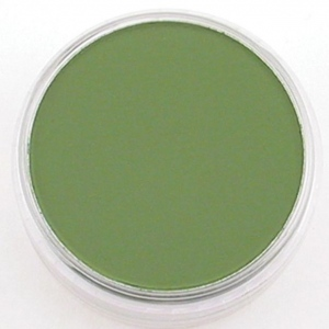 PanPastel® Ultra Soft Artists' Painting Pastel Chromium Oxide Green: Green, Pan, Ultra Soft, (model PP26605), price per each