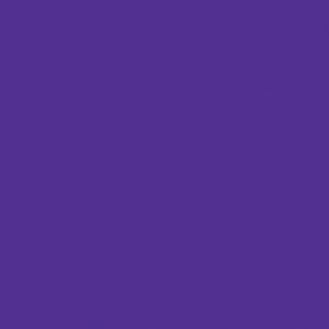 Finetec Opaque Watercolor Refill Pan Violet: Purple, Pan, Refill, Watercolor, (model LO12/05), price per box
