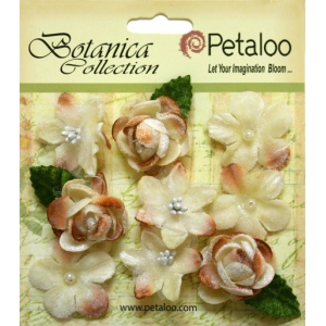 Petaloo - Vintage Velvet Minis x 9 - Ivory
