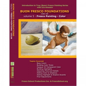 Natural Pigments Buon Fresco Foundations DVD Vol. 5