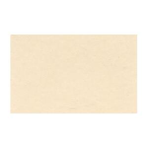 Royal Talens Amsterdam® All Acrylic Standard Series 120ml Titanium Buff Light; Color: Brown; Format: Tube; Size: 120 ml; Type: Acrylic; (model 17092892), price per tube