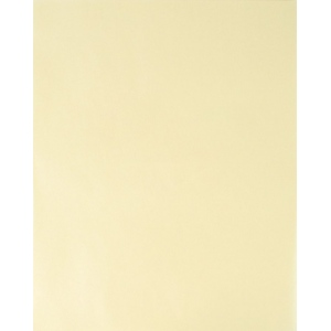 "Bee Paper® Extra Fine Trace Sheets 9"" x 12"": Sheet, 100 Sheets, 9"" x 12"", Tracing, 25 lb, (model B525P100-912), price per 100 Sheets"