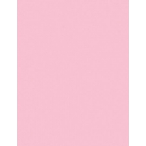 "My Colors Heavyweight 100 lb. Cardstock Ballerina Pink 8.5 x 11; Color: Red/Pink; Format: Sheet; Quantity: 25 Sheets; Size: 8 1/2"" x 11""; Texture: Smooth; Weight: 100 lb; (model E011101), price per 25 Sheets"