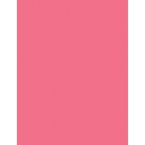 "My Colors Heavyweight 100 lb. Cardstock Rose Chintz 8.5 x 11; Color: Red/Pink; Format: Sheet; Quantity: 25 Sheets; Size: 8 1/2"" x 11""; Texture: Smooth; Weight: 100 lb; (model E011102), price per 25 Sheets"