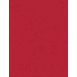 """My Colors Heavyweight 100 lb. Cardstock Classic Cherry 8.5 x 11: Red/Pink, Sheet, 25 Sheets, 8 1/2"""" x 11"""", Smooth, 100 lb, (model E012201), price per 25 Sheets"""