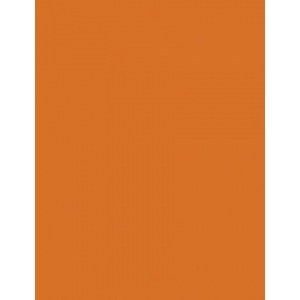 """My Colors Heavyweight 100 lb. Cardstock Autmun Leaf 8.5 x 11; Color: Orange; Format: Sheet; Quantity: 25 Sheets; Size: 8 1/2"""" x 11""""; Texture: Smooth; Weight: 100 lb; (model E013302), price per 25 Sheets"""