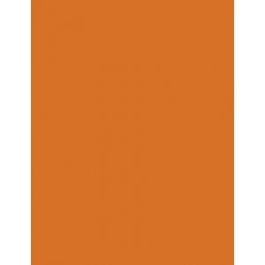 "My Colors Heavyweight 100 lb. Cardstock Autmun Leaf 8.5 x 11: Orange, Sheet, 25 Sheets, 8 1/2"" x 11"", Smooth, 100 lb, (model E013302), price per 25 Sheets"