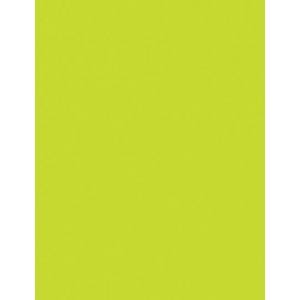 "My Colors Heavyweight 100 lb. Cardstock Lemon Lime 8.5 x 11; Color: Green; Format: Sheet; Quantity: 25 Sheets; Size: 8 1/2"" x 11""; Texture: Smooth; Weight: 100 lb; (model E015501), price per 25 Sheets"