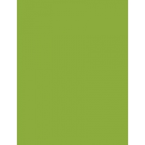 """My Colors Heavyweight 100 lb. Cardstock Crisp Green 8.5 x 11; Color: Green; Format: Sheet; Quantity: 25 Sheets; Size: 8 1/2"""" x 11""""; Texture: Smooth; Weight: 100 lb; (model E015502), price per 25 Sheets"""