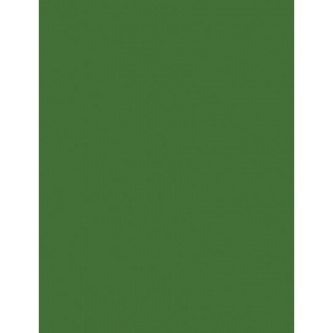 "My Colors Heavyweight 100 lb. Cardstock Herb Garden 8.5 x 11; Color: Green; Format: Sheet; Quantity: 25 Sheets; Size: 8 1/2"" x 11""; Texture: Smooth; Weight: 100 lb; (model E015503), price per 25 Sheets"