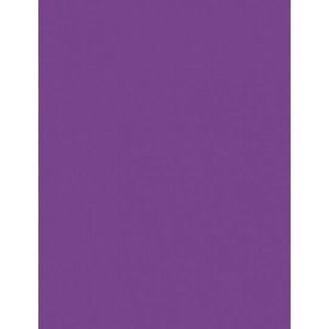 """My Colors Heavyweight 100 lb. Cardstock Purple Heart 8.5 x 11; Color: Purple; Format: Sheet; Quantity: 25 Sheets; Size: 8 1/2"""" x 11""""; Texture: Smooth; Weight: 100 lb; (model E016601), price per 25 Sheets"""