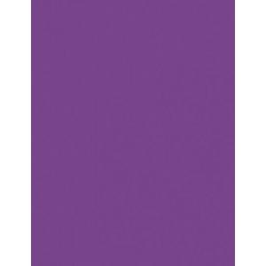 "My Colors Heavyweight 100 lb. Cardstock Purple Heart 8.5 x 11: Purple, Sheet, 25 Sheets, 8 1/2"" x 11"", Smooth, 100 lb, (model E016601), price per 25 Sheets"