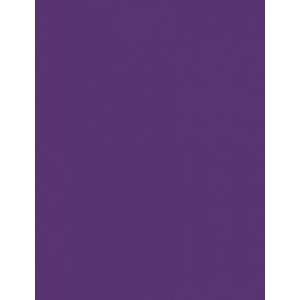 """My Colors Heavyweight 100 lb. Cardstock Cyber Grape 8.5 x 11; Color: Purple; Format: Sheet; Quantity: 25 Sheets; Size: 8 1/2"""" x 11""""; Texture: Smooth; Weight: 100 lb; (model E016602), price per 25 Sheets"""