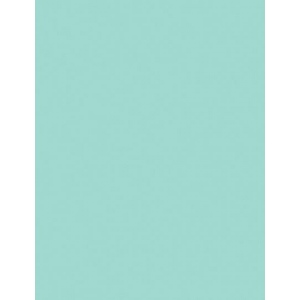 "My Colors Heavyweight 100 lb. Cardstock Pale Aqua 8.5 x 11; Color: Blue; Format: Sheet; Quantity: 25 Sheets; Size: 8 1/2"" x 11""; Texture: Smooth; Weight: 100 lb; (model E017701), price per 25 Sheets"