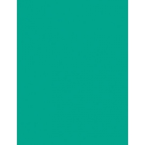 """My Colors Heavyweight 100 lb. Cardstock Tropical Sea 8.5 x 11; Color: Green; Format: Sheet; Quantity: 25 Sheets; Size: 8 1/2"""" x 11""""; Texture: Smooth; Weight: 100 lb; (model E017702), price per 25 Sheets"""