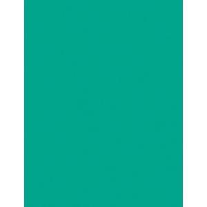 "My Colors Heavyweight 100 lb. Cardstock Tropical Sea 8.5 x 11: Green, Sheet, 25 Sheets, 8 1/2"" x 11"", Smooth, 100 lb, (model E017702), price per 25 Sheets"
