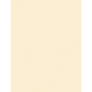 "My Colors Heavyweight 100 lb. Cardstock Whitewash 8.5 x 11: Red/Pink, Sheet, 25 Sheets, 8 1/2"" x 11"", Smooth, 100 lb, (model E018801), price per 25 Sheets"