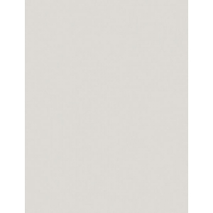 "My Colors Heavyweight 100 lb. Cardstock Shale 8.5 x 11; Color: Black/Gray; Format: Sheet; Quantity: 25 Sheets; Size: 8 1/2"" x 11""; Texture: Smooth; Weight: 100 lb; (model E018803), price per 25 Sheets"
