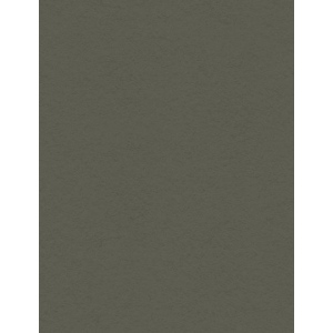 "My Colors Heavyweight 100 lb. Cardstock Battleship Gray 8.5 x 11: Black/Gray, Sheet, 25 Sheets, 8 1/2"" x 11"", Smooth, 100 lb, (model E019902), price per 25 Sheets"