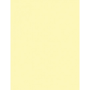"My Colors Classic 80 lb. Cardstock Yellow 8.5 x 11; Color: Yellow; Format: Sheet; Quantity: 25 Sheets; Size: 8 1/2"" x 11""; Texture: Smooth; (model E044409), price per 25 Sheets"