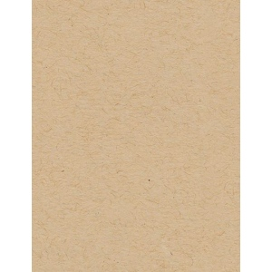 "My Colors Classic 80 lb. Cardstock Kraft 8.5 x 11; Color: Brown; Format: Sheet; Quantity: 25 Sheets; Size: 8 1/2"" x 11""; Texture: Smooth; (model E049905), price per 25 Sheets"