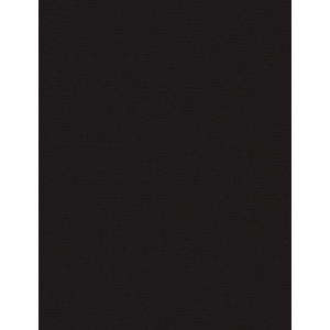"My Colors Canvas 80 lb. Textured Cardstock Black Magic 8.5 x 11: Black/Gray, Sheet, 25 Sheets, 8 1/2"" x 11"", Canvas, 80 lb, (model E05101019), price per 25 Sheets"