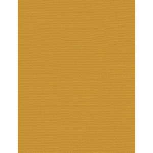 "My Colors Canvas 80 lb. Textured Cardstock Tuscan Sun 8.5 x 11; Color: Yellow; Format: Sheet; Quantity: 25 Sheets; Size: 8 1/2"" x 11""; Texture: Canvas; Weight: 80 lb; (model E054410), price per 25 Sheets"