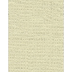 "My Colors Canvas 80 lb. Textured Cardstock Muslin 8.5 x 11; Color: Brown; Format: Sheet; Quantity: 25 Sheets; Size: 8 1/2"" x 11""; Texture: Canvas; Weight: 80 lb; (model E058808), price per 25 Sheets"