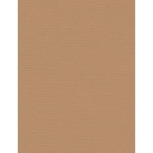 """My Colors Canvas 80 lb. Textured Cardstock Sand Beach 8.5 x 11: Brown, Sheet, 25 Sheets, 8 1/2"""" x 11"""", Canvas, 80 lb, (model E058811), price per 25 Sheets"""