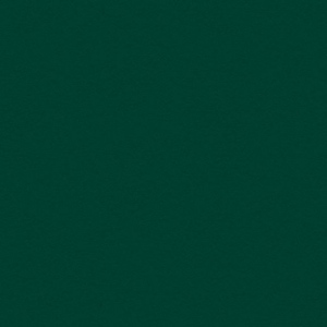 """My Colors Heavyweight 100 lb. Cardstock Hunter Green 12 x 12; Color: Green; Format: Sheet; Quantity: 25 Sheets; Size: 12"""" x 12""""; Texture: Smooth; Weight: 100 lb; (model T017703), price per 25 Sheets"""