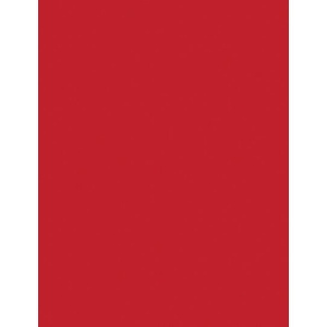 """My Colors Classic 80 lb. Cardstock Scarlet 12 x 12; Color: Red/Pink; Format: Sheet; Quantity: 25 Sheets; Size: 12"""" x 12""""; Texture: Smooth; (model T042209), price per 25 Sheets"""