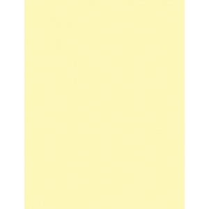 """My Colors Classic 80 lb. Cardstock Yellow 12 x 12; Color: Yellow; Format: Sheet; Quantity: 25 Sheets; Size: 12"""" x 12""""; Texture: Smooth; (model T044409), price per 25 Sheets"""