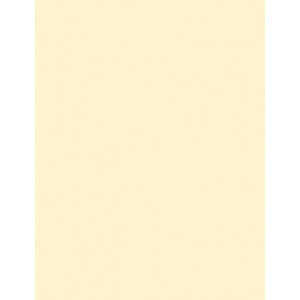 """My Colors Classic 80 lb. Cardstock Ivory 12 x 12; Color: White/Ivory; Format: Sheet; Quantity: 25 Sheets; Size: 12"""" x 12""""; Texture: Smooth; (model T048807), price per 25 Sheets"""